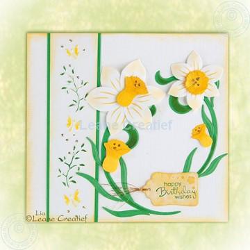 Afbeeldingen van Daffodil