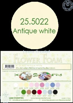 Afbeeldingen van Flower foam A4 sheet antique white