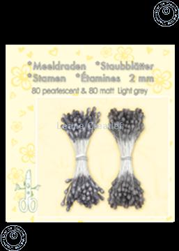 Afbeeldingen van Meeldraden ± 80 matt & 80 light grey