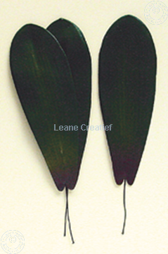 "Image de LeCreaDesign® Paquets de feuilles ""phalaenopsis"""