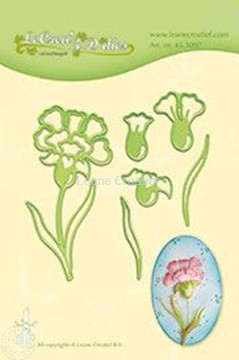 Picture of Carnation