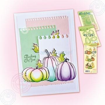 Image de Pumpkins & notes